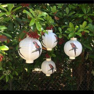 World Market 4 Parrot Paper Lanterns Battery Opera
